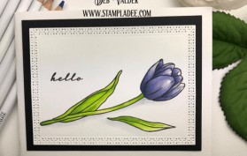 learn to watercolor with watercolor pencils #1