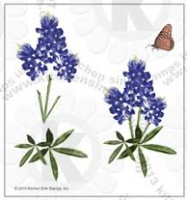 blue bonnet and butterfly stmap set